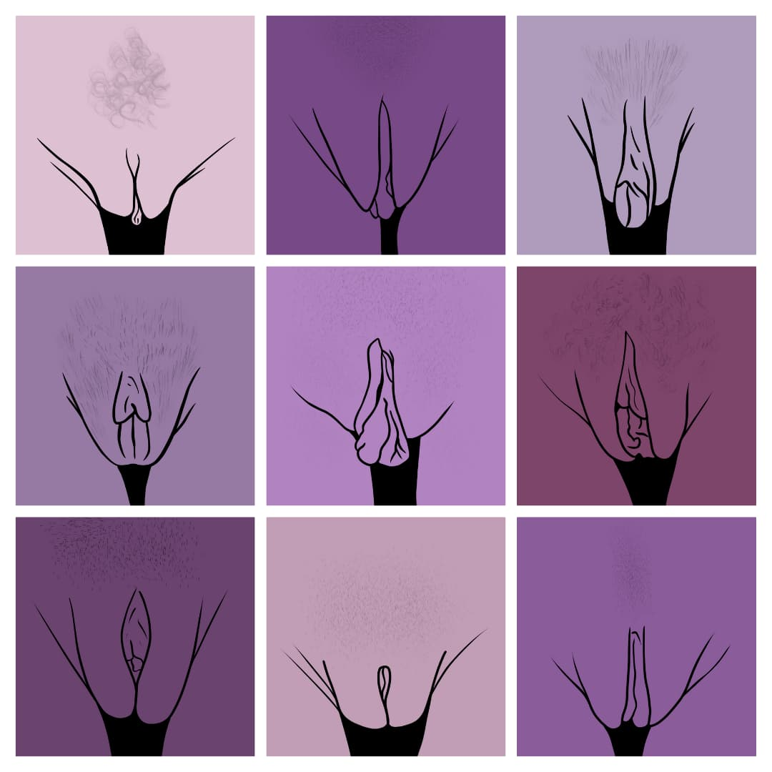 A grid of different kinds of labia